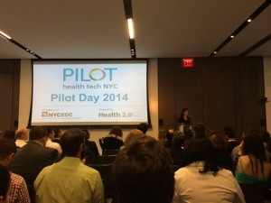 Pilot Day 2014